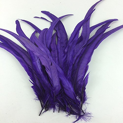 Sowder Purple Rooster Coque Tail Feathers 13-16inch Lengh Pack of 50 (Feathers Purple)