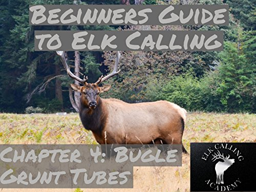 Elk Hunting Video - Valuable Advice for Selecting the Top Bugle Grunt Tube