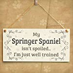 """Meijiafei My Springer Spaniel Isn't Spoiled I'm Just Well Trained - Funny Home Accessory Gift Sign for Springer Spaniel Dog Owners 10""""x5"""" 6"""