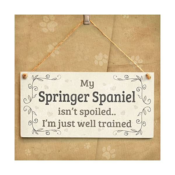 """Meijiafei My Springer Spaniel Isn't Spoiled I'm Just Well Trained - Funny Home Accessory Gift Sign for Springer Spaniel Dog Owners 10""""x5"""" 2"""