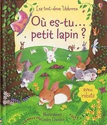 Où es-tu petit lapin ?