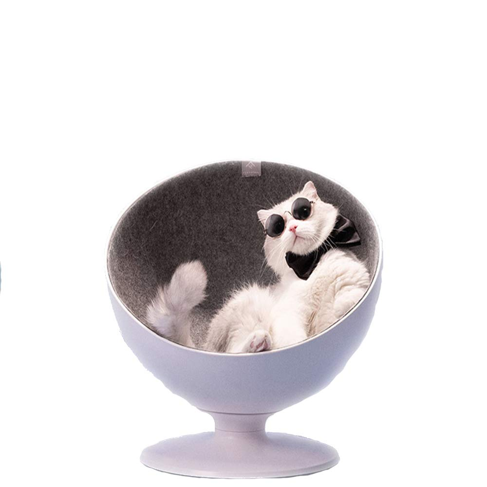 A cat House That a cat Likes at First Sight and a cat House That Will Never be outdated