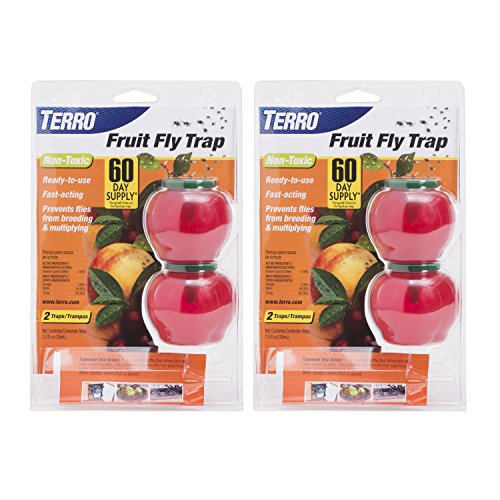 Terro T2502-2 Fruit Fly 4 Total Traps, 2 Pack, ()