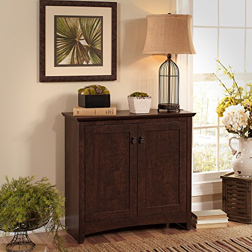 - Bush Furniture Buena Vista Small Storage Cabinet with Doors in Madison Cherry
