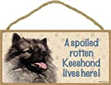 (SJT60713) A spoiled rotten Keeshond lives here wood sign plaque 5