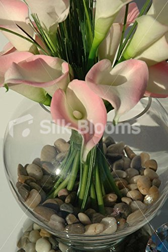 Claro rosa marfil pantalla de gato con pecera mesa Lily Beauty ...