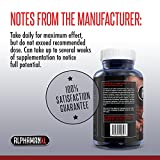 AlphaMAN XL Male Pills | 2+ Inches in 60 days - Enlargement Booster Increases Energy, Mood & Endurance | Best Performance Supplement for Men - 1 Month Supply, 60 Capsules - 51Cl H0Ta3L - AlphaMAN XL Male Pills | 2+ Inches in 60 days – Enlargement Booster Increases Energy, Mood & Endurance | Best Performance Supplement for Men – 1 Month Supply, 60 Capsules