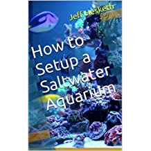 How to Setup a Saltwater Aquarium