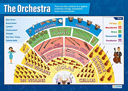 The Orchestra | Music Posters | Gloss Paper measuring 33