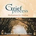 The Grief Process: Meditations for Healing Audiobook by  Stephen, Ondrea Levine Narrated by  Stephen, Ondrea Levine