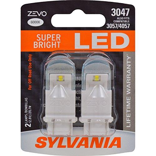 3047 bulb - 6