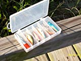 BASS FISH LURE SET of SIX (6) in Plastic Carry Case by FTUSA® Review