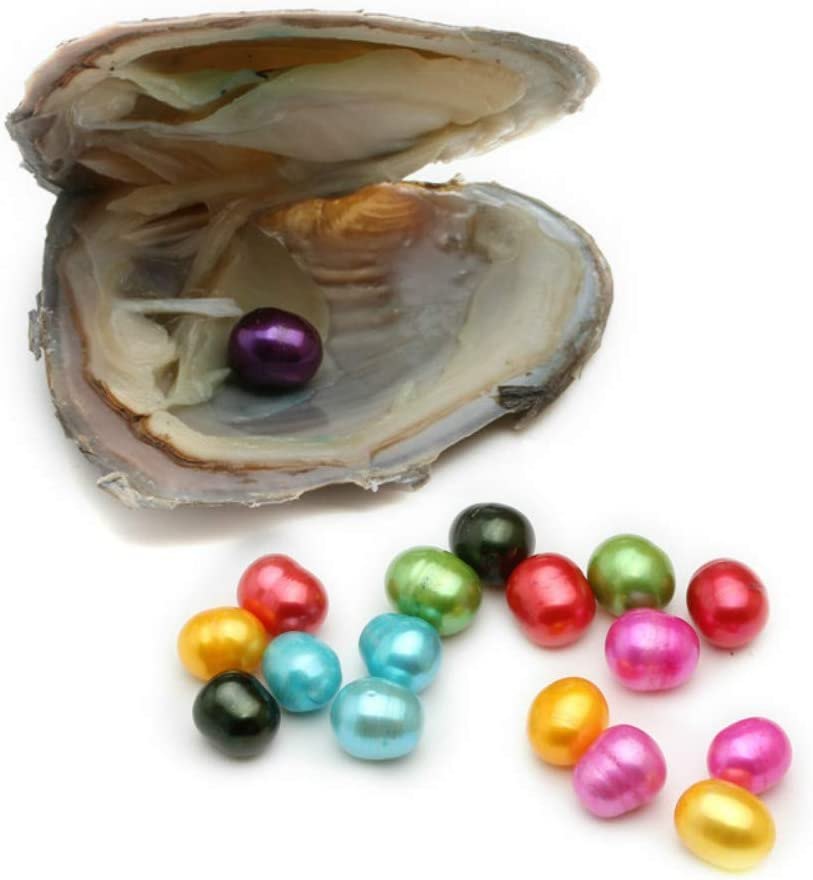 Vacuum-Packing 2pcs 6-7mm Freshwater Oval 20 Colors Pearl in Oyster Can Make Pendant Necklace (2 PCS Oyster)