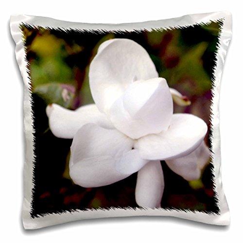 WhiteOak Photography Floral Prints - A beautiful garden gard
