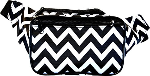 SoJourner Bags Chevron Polka Fanny product image