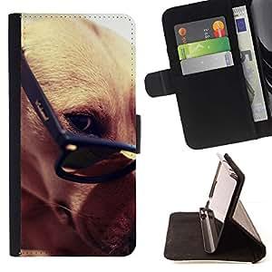 Momo Phone Case / Flip Funda de Cuero Case Cover - Greyhound gafas inteligentes del perro de Brown; - Apple Iphone 6
