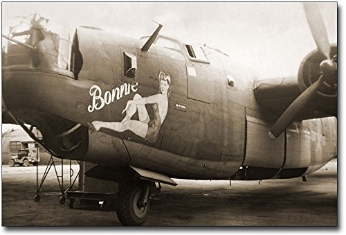 (B-24 Liberator Bomber Pin-up Nose Art WWII Aircraft 12x18 Silver Halide Photo Print )