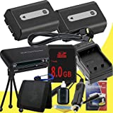 TWO NPFH50 Lithium Ion Replacement Batteries w/Charger + 8GB SDHC Memory Card + Mini HDMI + USB SD Memory Card Reader /Wallet + Deluxe Starter Kit for Sony DCRDVD508, DCRDVD408, DCRDVD308, DCRDVD108, DCRDVD505, DCRDVD405, DCRDVD305, DCRDVD205, DCRDVD105,