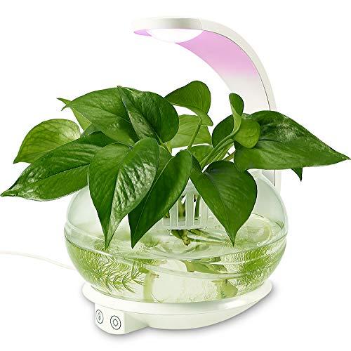 Uv Light Herb Garden in US - 4