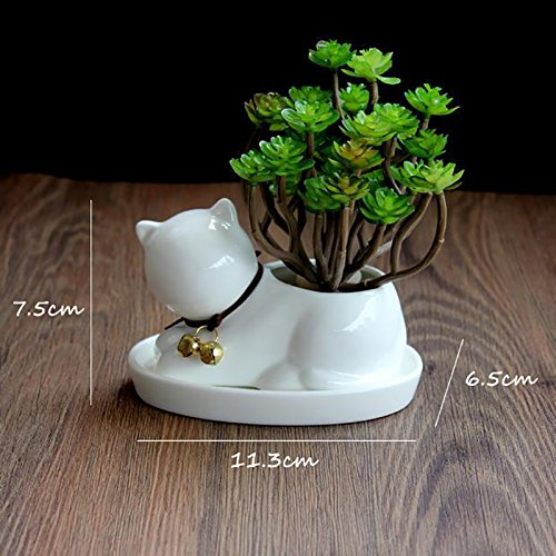 Best Garden Tools 1pc Cartoon Cat Ceramic Planter for Succulents Desktop Succulents Pot Decorative Mini Flower Pot Home Garden Decor
