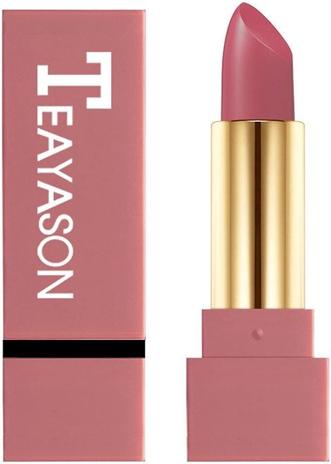 BHYDRY pintalabios Lápiz Labial Mate Impermeable Pigmento Marrón Desnudo Lápiz Labial de Larga duración Maquillaje Mate: Amazon.es: Ropa y accesorios