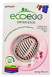 ecoegg Dryer Egg Spring Blossom, 2 Piece