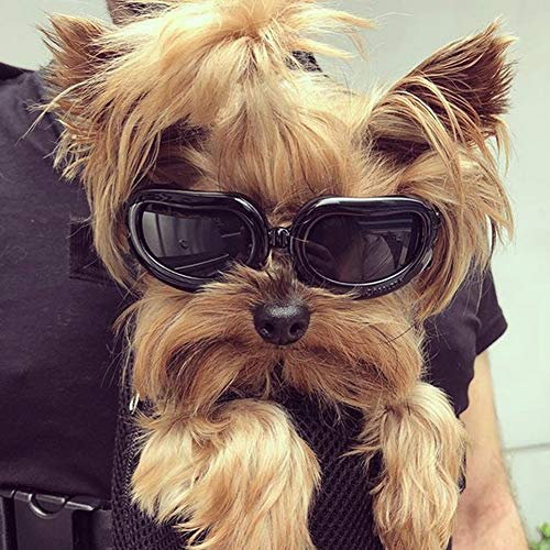 Kailian Dog Goggles Stylish Windproof Anti-ultraviolet Sunglasses For Doggie Puppy-Black