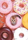 img - for Tiny Cat Flexi Journal book / textbook / text book