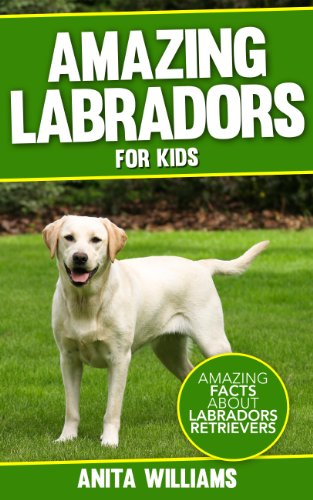 AMAZING LABRADORS: A Children's Book About Labrador Retriever's Amazing Facts, Figures and Pictures/Photos: (Dog Books For Kids)