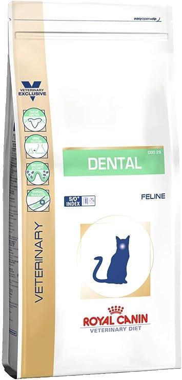ROYAL CANIN Alimento para Gatos Dental DSO29-3 kg: Amazon.es ...