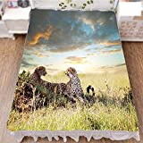 iPrint Bed Skirt Dust Ruffle Bed Wrap 3D Print,Nature Grass Dangerous Animals Hunters Rainy,Fashion Personality Customization adds Color to Your Bedroom. by 59''x78.7''