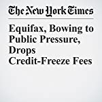 Equifax, Bowing to Public Pressure, Drops Credit-Freeze Fees | Ron Lieber