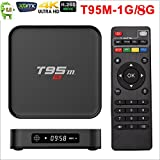 4K Android TV Box, AUHKO T95M Media Players 2.4G WiFi Amlogic S905X Quad Core H.265 4K HD Set-top Box