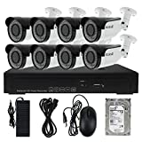 8CH Security Camera System POE with 1080P IP Camera 2.8-12mm 4X Zoom Adjustable Lens, 2TB Hard Disk for Auto Recording Approx 2 Weeks.
