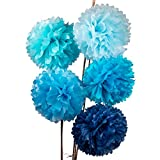 Arts & Crafts : Luna Bazaar Tissue Paper Pom Poms (10-Inch, Multicolor Blues, Set of 5) - for Baby Showers, Nurseries, and Parties - Hanging Paper Flower Decorations
