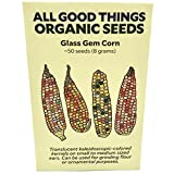 Glass Gem Corn Seeds (~50) by All Good Things Organic Seeds: Certified Organic, Non-GMO, Heirloom, Open Pollinated Seeds from The United States