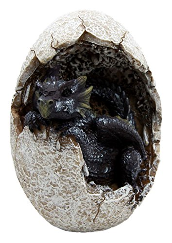 Atlantic Collectibles Fossil Twilight Onyx Dragon Hatchling Breaking Out Of Egg Shell Decorative Figurine