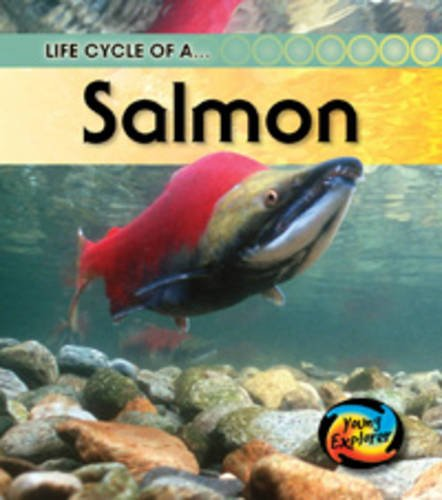 Download Life Cycle of a Salmon (Young Explorer: Life Cycles) pdf