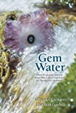 img - for Gem Water: How to Prepare and Use Over 130 Crystal Waters for Therapeutic Treatments by Joachim Goebel (2008-04-06) book / textbook / text book