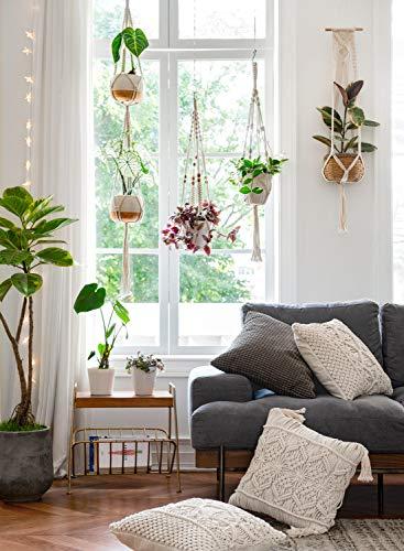 Mkono Macrame Plant Hangers Set of 4 Indoor Wall Hanging Planter Basket Decorative Flower Pot Holder with 4 Hooks for… 2