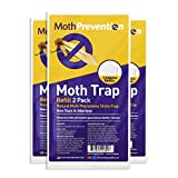 CLOTHES MOTH TRAP Replacement Strips (6 Strips in Total) - for Moth-Prevention Clothes Moth Traps