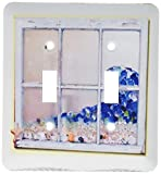 3dRose LLC lsp_109995_2 Shabby Chic Shoreline Window of Sea glass N Shells Double Toggle Switch
