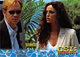 Yelina Salas Horatio Caine trading card CSI Miami 2004#51 David Caruso Sofia Milos