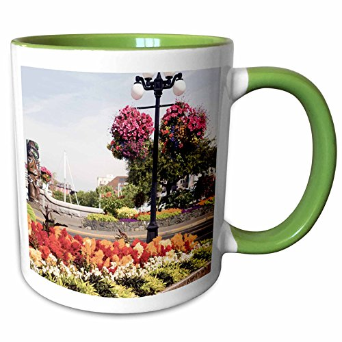3dRose Danita Delimont - British Columbia - Hanging Flower Baskets, Victoria, B.C. -CN02 SWS0024 - Stuart Westmorland - 11oz Two-Tone Green Mug (mug_70769_7) (Christmas Gift Baskets Victoria Bc)