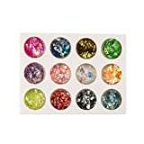 NEWYEARN BEAUTY 12 Colors Nail Glitter Shimmer Dust Powder Set/3g Rainbow Pigment Manicure Chrome Pigments DIY#6
