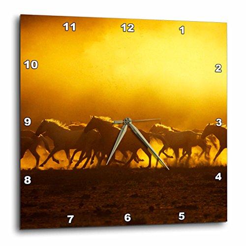 3dRose dpp_93418_3 Oregon, Wild Kiger Mustang Horse Kicking Up Dust-Us38 Bja0029-Jaynes Gallery-Wall Clock, 15 by (Kiger Mustang Horse)