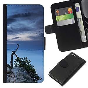 Protector de cuero de la PU de la cubierta del estilo de la carpeta del tirón BY RAYDREAMMM - Apple Iphone 5C - Lago Árbol