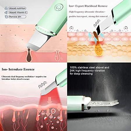 BelonLink Skin Scrubber, Limpiador Facial Ultrasónico, Peeling Facial con 4 Modos, USB Recargable, Exfoliación Facial Limpiador dePoros,para Limpieza Facial y Cuidado Facial