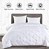 JOLLYVOGUE King Size Weighted Blanket(20lbs,88x104Inches),Queen or King Size Bed Adult Weighted Blanket