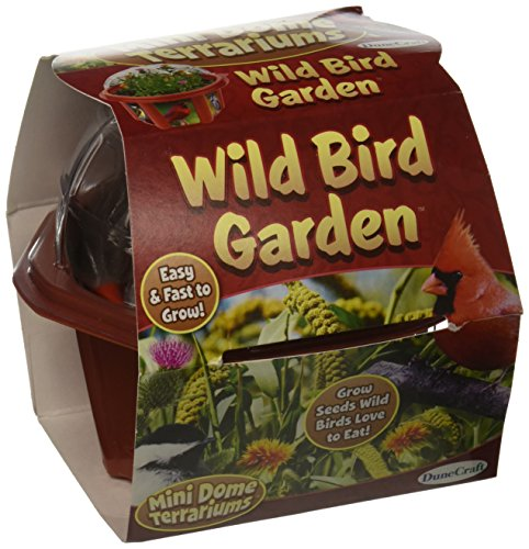 Dunecraft Wild Bird Garden Science Kit